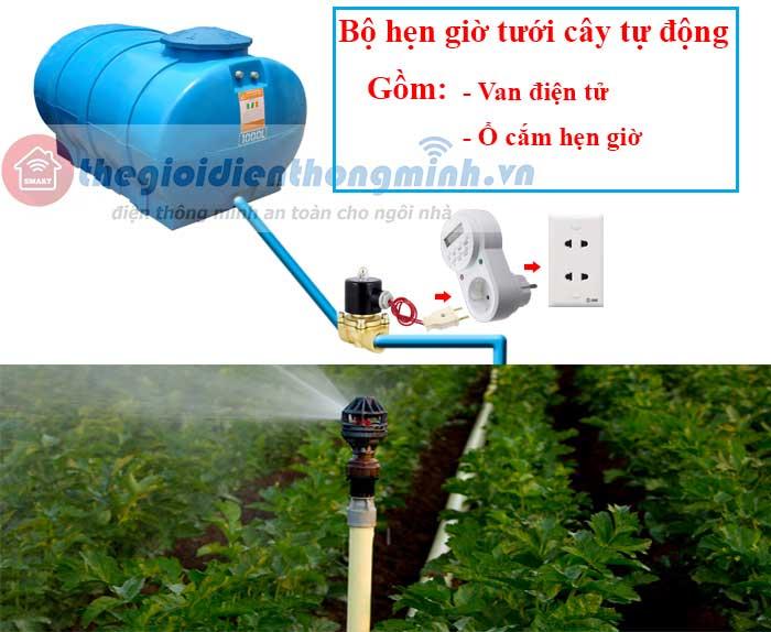 hệ thống tưới nước tự động cho cây
