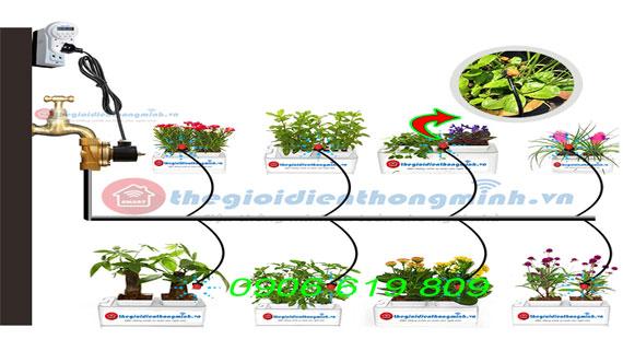 hệ thống tưới nước tưới cây nhỏ giọt tự động