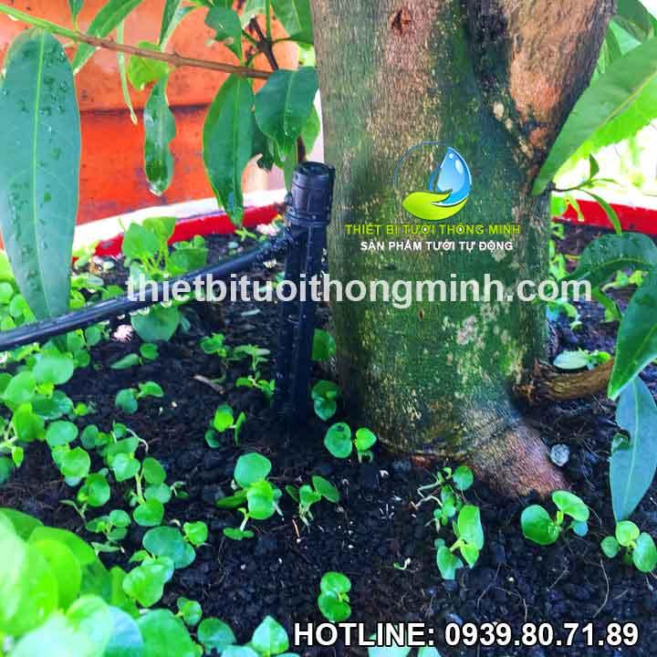 Đầu tưới cắm gốc nhỏ giọt điều chỉnh Florain