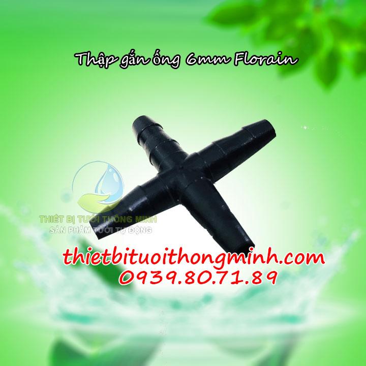 thập chia nhánh ống 6ly
