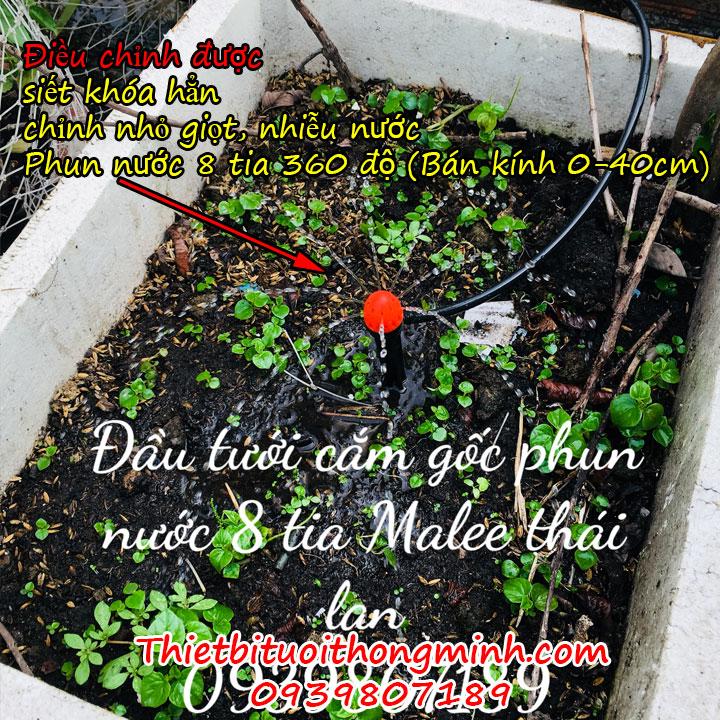 Máy phun nước tưới cây tự động hẹn giờ 20 đầu tưới 8 tia cắm gốc Malee