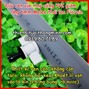 Đầu ren vặn kết nối ống cứng pvc sang ống 6ly FLorain nhựa tốt