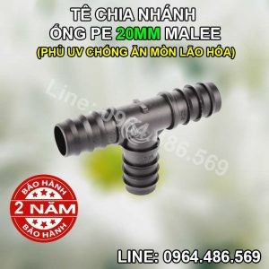 Tê ống nối 20mm Malee(
